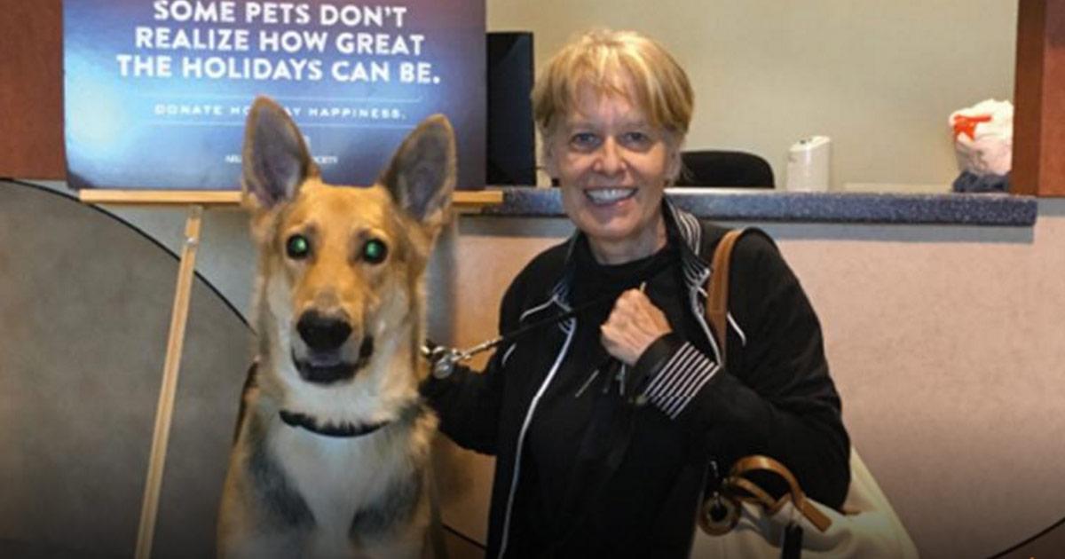 Elle adopte ce chien dont personne ne voulait au refuge. maintenant, portez bien attention à ses yeux.