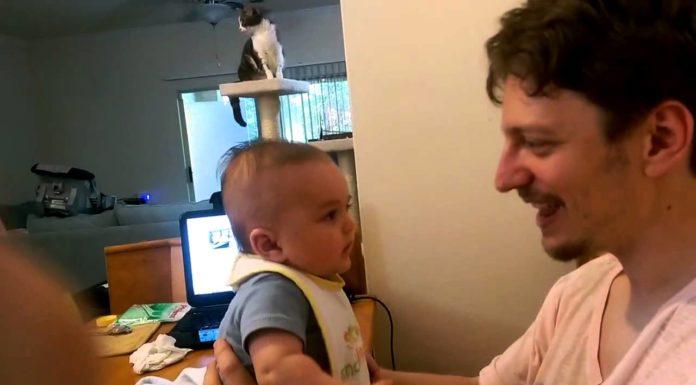 Un bébé et son père