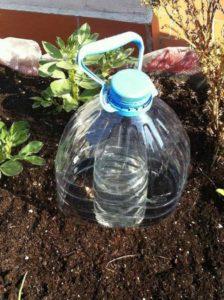 Voici Une Technique Ingénieuse Pour Irriguer Les Plantes Tout En économisant Beaucoup D'eau│MiniBuzz