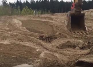 Un ouvrier voit quelque chose bouger dans la boue: ce qu'il réussit à faire est incroyable!