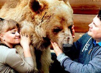 Ils ont adopté cet animal il y a plus de 23 ans… Attendez de voir comment ils vivent tous ensemble !   MiniBuzz