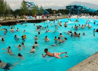 Envie de faire pipi alors que vous êtes dans la piscine ? Voilà pourquoi vous ne devriez jamais le faire dans l'eau.│MiniBuzz