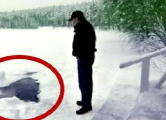 Cet homme voit un trou dans la glace… attendez de voir ce qu'il va découvrir!│MiniBuzz