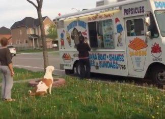 Il fait la queue pour prendre une glace, mais quand son tour arrive? Wow!