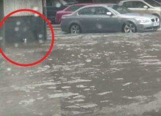 Un Garçon Remarque Quelque Chose Lors De L'inondation: Son Intervention Sera DÉCISIVE │MiniBuzz