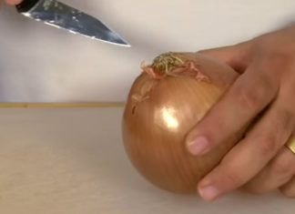 Voici la méthode pour couper un oignon sans larmes.│MiniBuzz