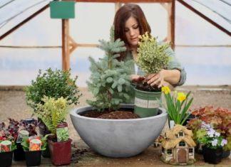 Elle met différentes plantes dans un vase... Le résultat final est absolument magique.│ MiniBuzz