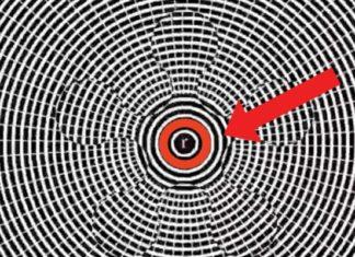 Asseyez-vous, Fixez Le Centre De La Vidéo Pendant Quelques Secondes, Puis Regardez Ailleurs: WOW!!! | Minibuzz