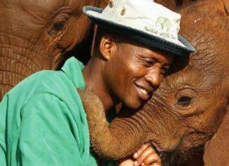 Ils défendent les derniers éléphants du Kenya : ce sont des héros│MiniBuzz