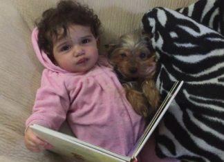 Voilà ce que font tous les soirs cette petite fille et son chien: Leur douceur est irrésistible. │ MiniBuzz