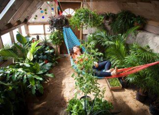 """Voici la """"serre du futur"""" : une maison autosuffisante à construire soi-même"""