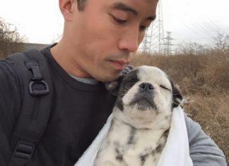 Marc Ching, sauve les chiens