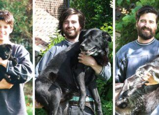 Alors qu'il va mourir, un chien reçoit l'hommage de son maître !