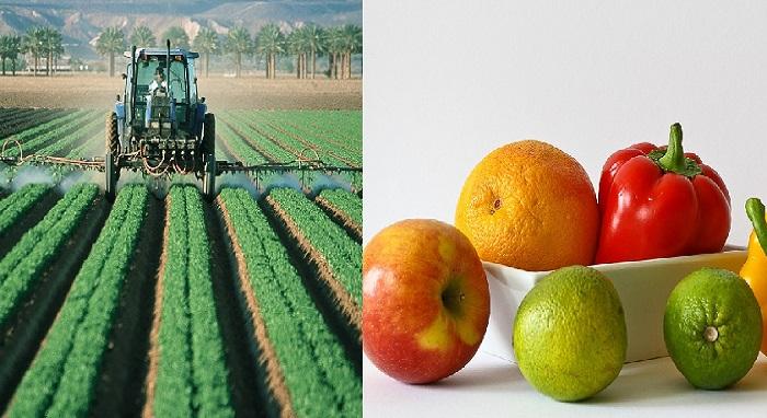 Les 3 astuces pour débarrasser vos fruits et légumes des pesticides.